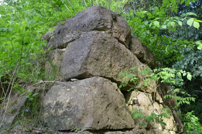 Dunarea Calarasi (10)