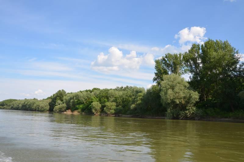 Dunarea Calarasi (2)