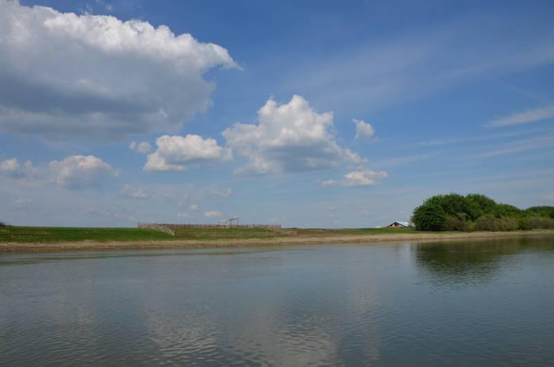 Dunarea Calarasi (4)