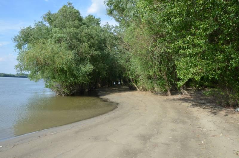 Dunarea Calarasi (7)
