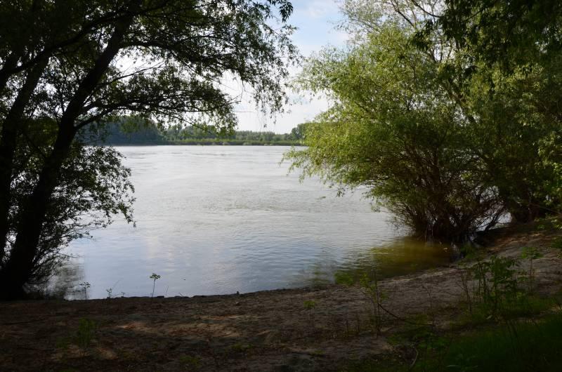 Dunarea Calarasi (8)