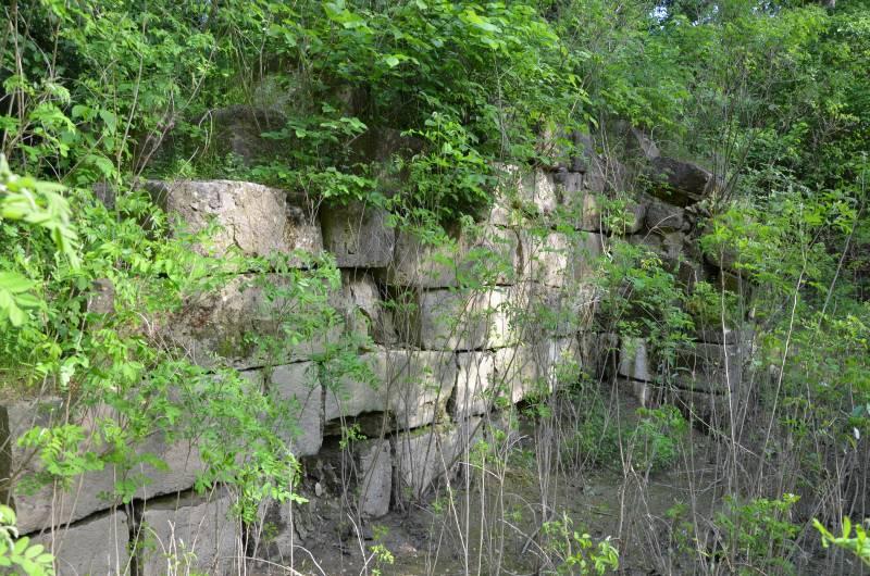 Dunarea Calarasi (9)