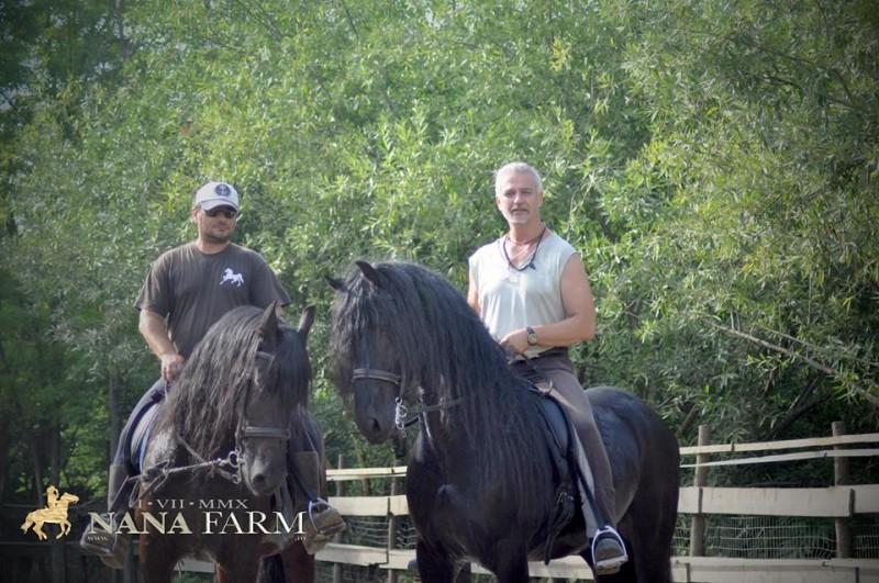 Nana Farm