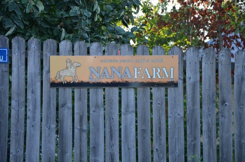 centru echitatie Nana Farm  (1)