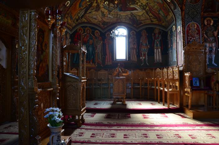 Manastirea Dejani (10)