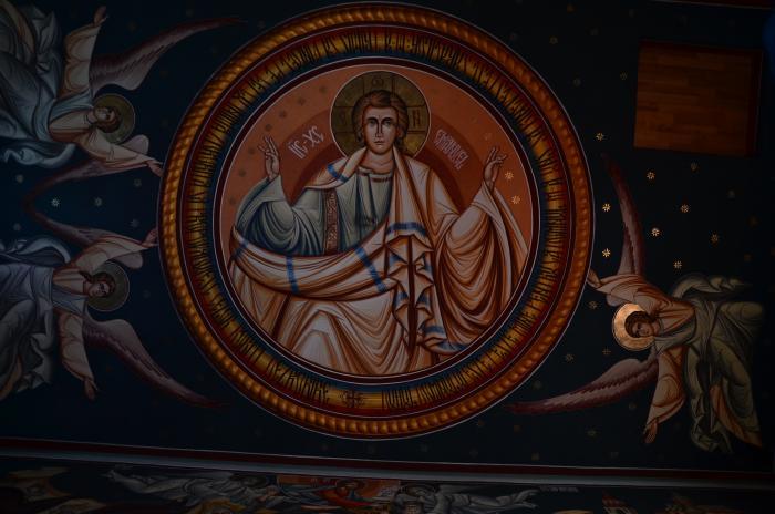 Manastirea Dejani (13)