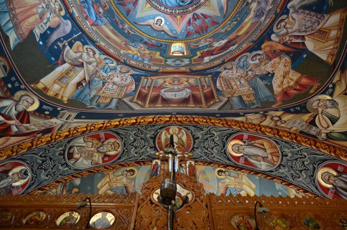 Manastirea Dejani (15)