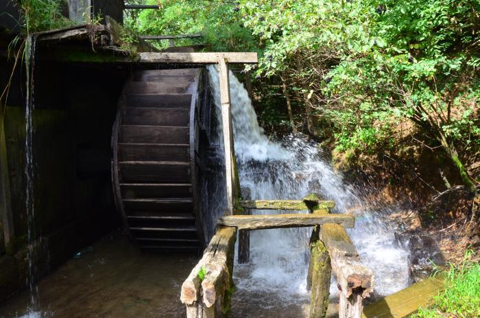 Moara cu apa Ohaba (3)