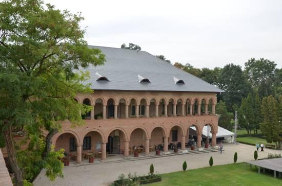Palatul Mogosoaia (16)