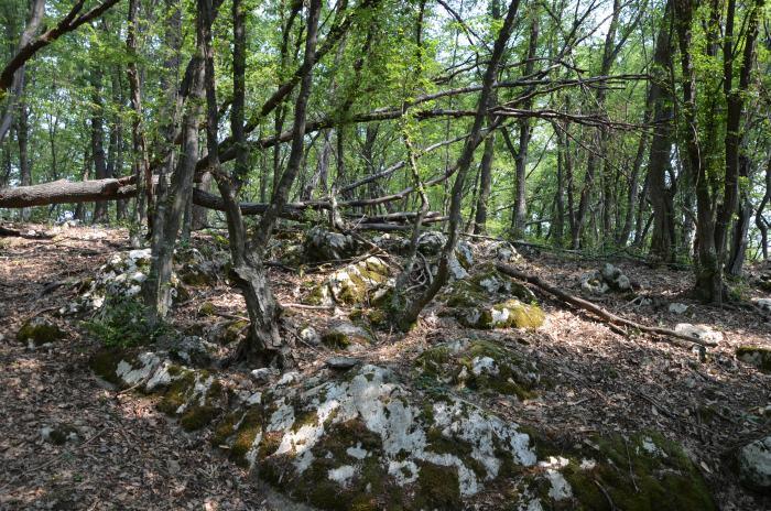 Cazanele Dunarii Ciucarul Mare (7)