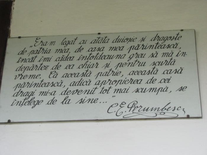 Ciprian Porumbescu (3)