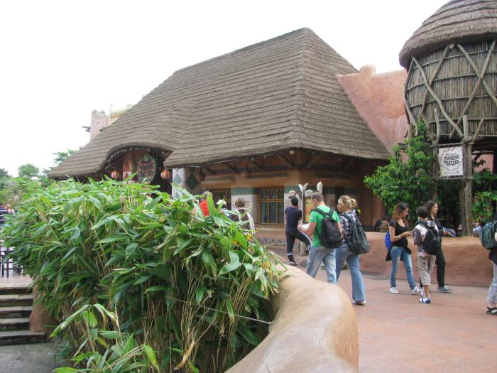 Disneyland Paris poze (21)