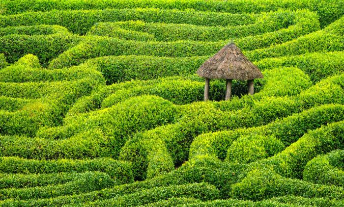 Glendurgan-Garden-England