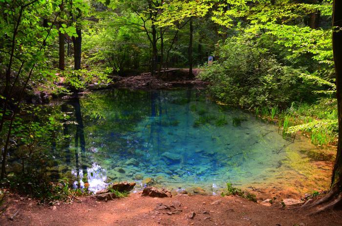 Lacul Ochiul Beiului Cheile Nerei (7)