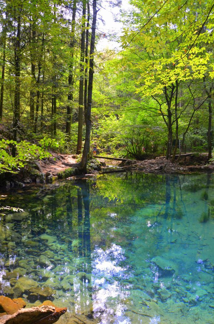 Lacul Ochiul Beiului Cheile Nerei (8)