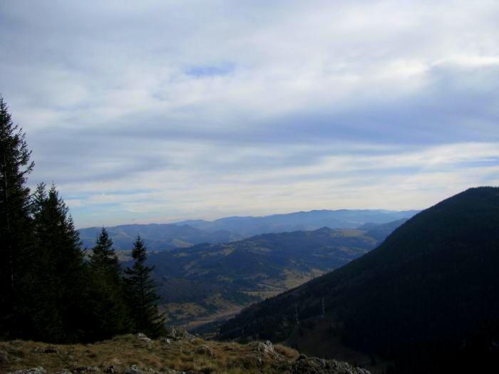 Traseu Lacul Rosu Suhardul Mic (16)