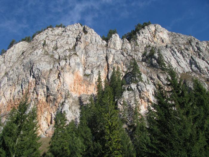 Traseu Lacul Rosu Suhardul Mic (24)
