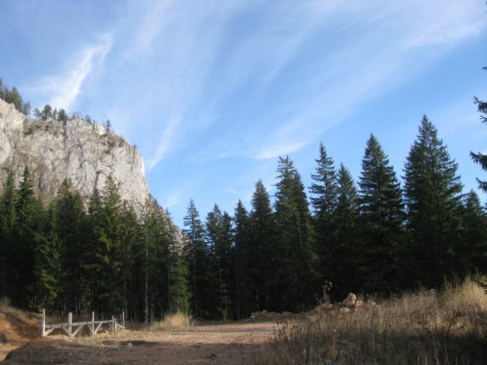 Traseu Lacul Rosu Suhardul Mic (4)