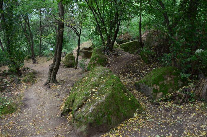 manastirea rupestra Sinca Veche (8)