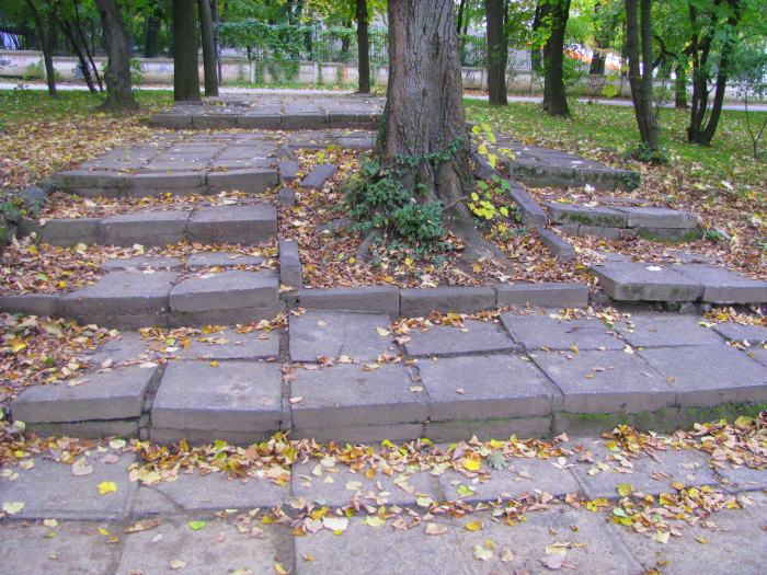 parcul Herastrau (8)