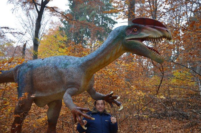 Dino Parc Rasnov (10)