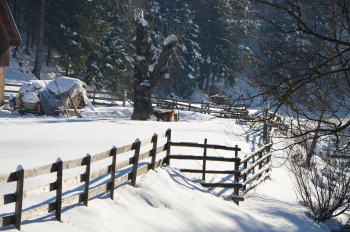 Moieciu de Sus iarna Revelion (3)