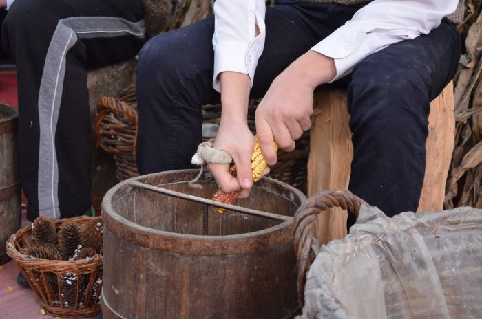 traditii Ciocanesti jud Calarasi (3)