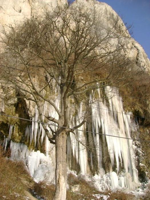 Cazanele Dunarii iarna (6)