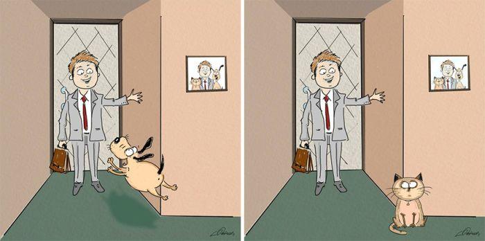 diferenta caini pisici (2)