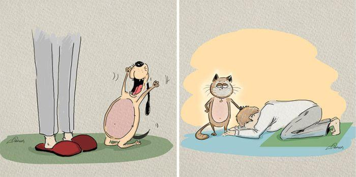 diferenta caini pisici (6)
