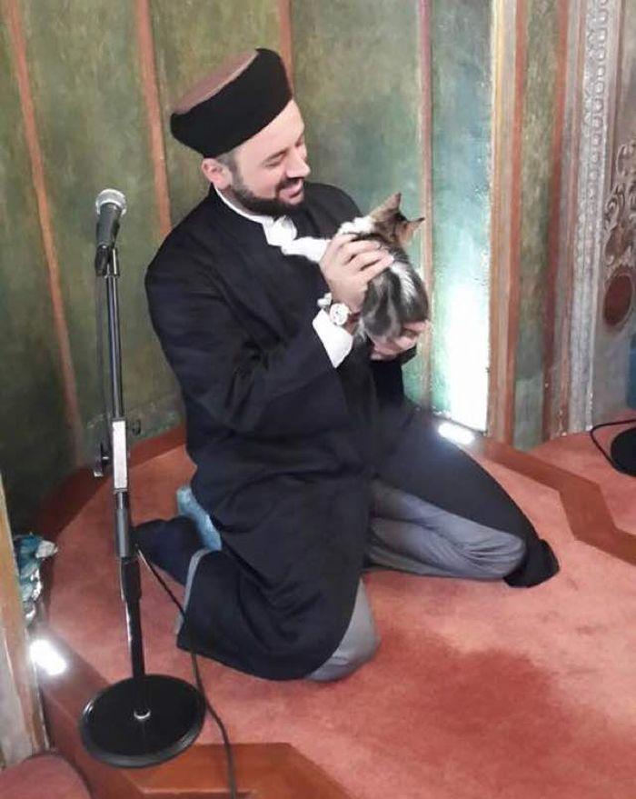pisici in moschee (1)