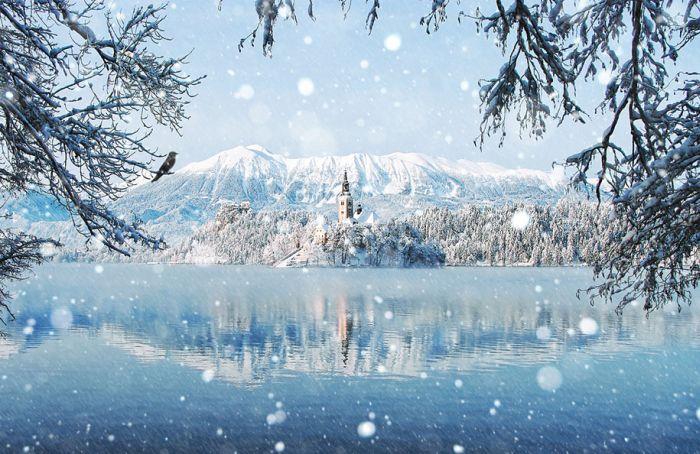 poze iarna (17)