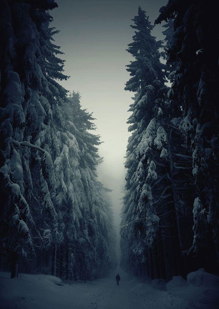 poze iarna (18)