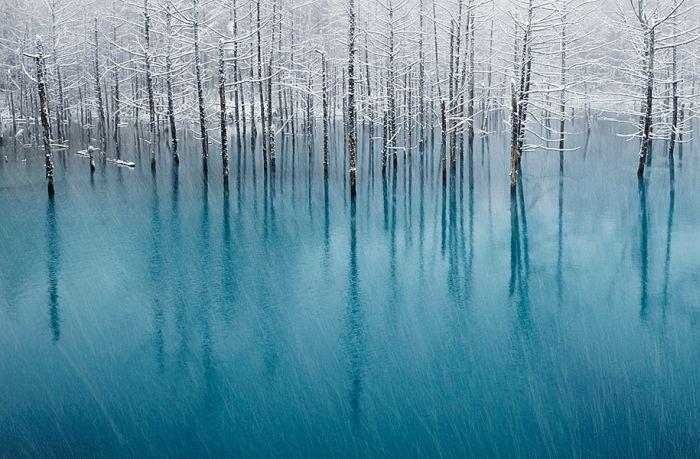 poze iarna (2)