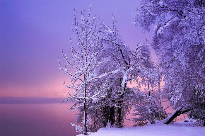 poze iarna (4)