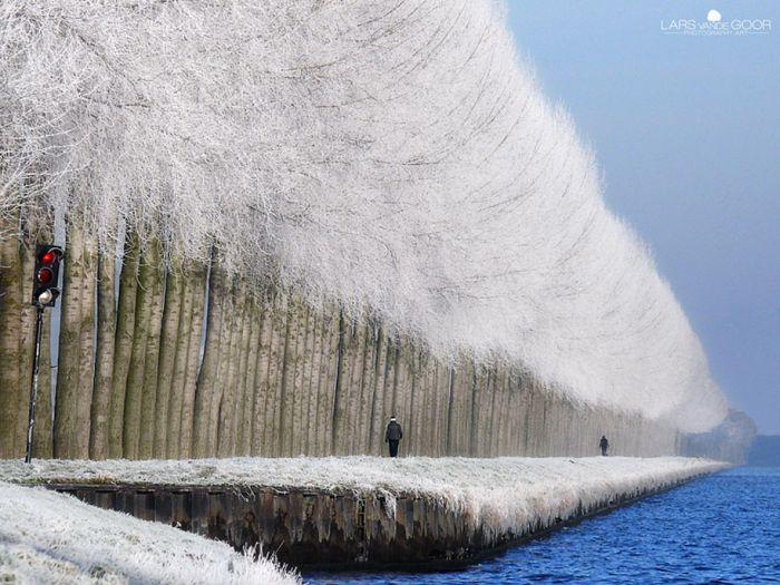 poze iarna (6)