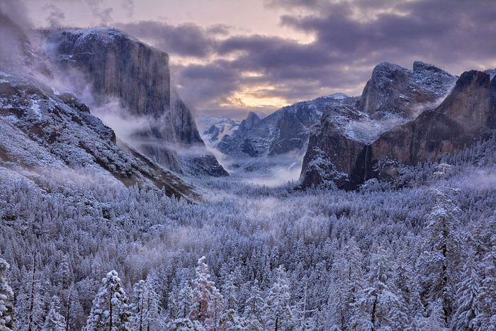 poze iarna (7)