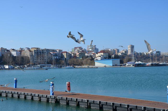 Marea Neagra Constanta iarna (6)