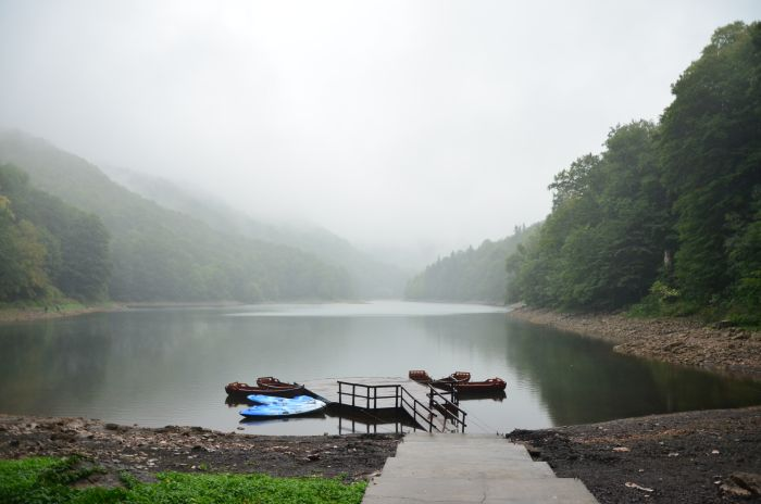 Park Biogradska Gora Muntenegru (20)