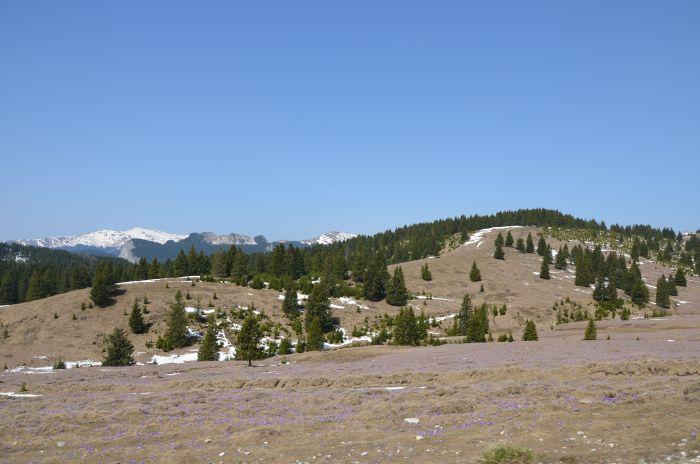 Transbucegi Lacul Bolboci (2)