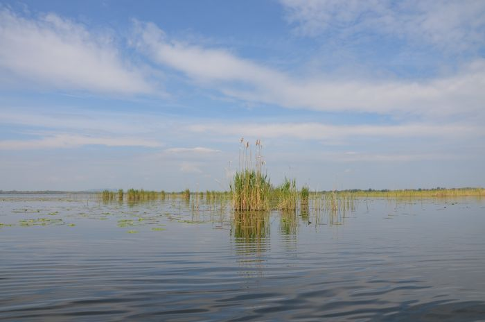 Delta Dunarii (13)