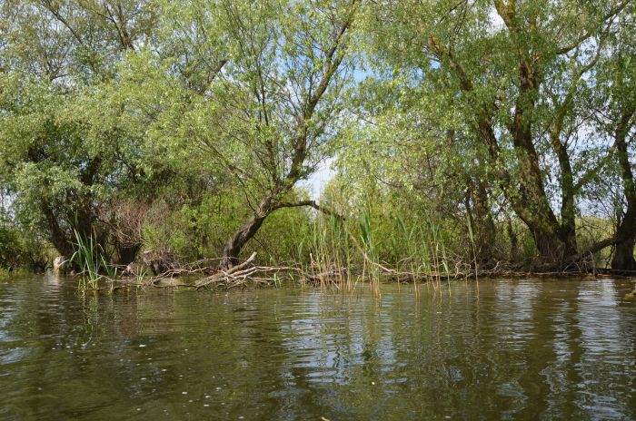 Delta Dunarii (14)