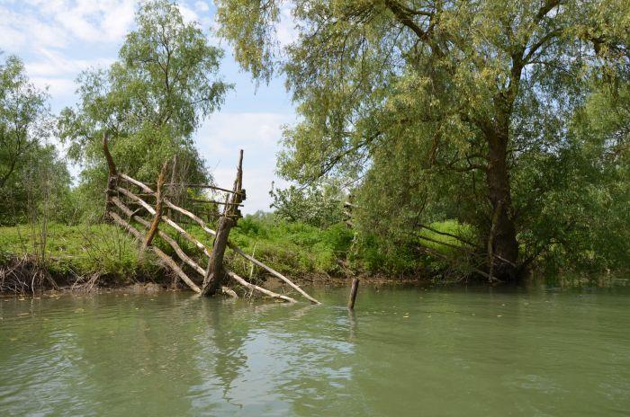 Delta Dunarii (16)