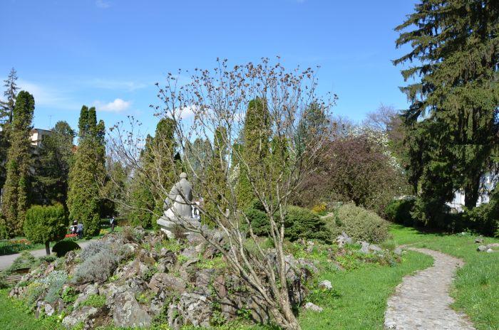 Gradina Botanica Cluj Napoca (3)