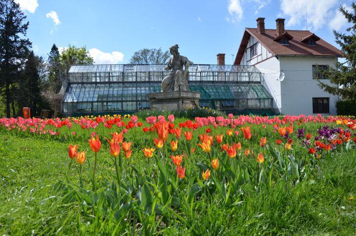 Gradina Botanica Cluj Napoca (6)
