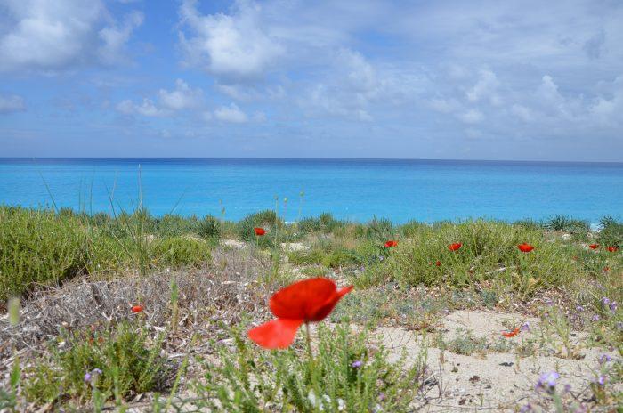 Lefkada plaja Milos (4)