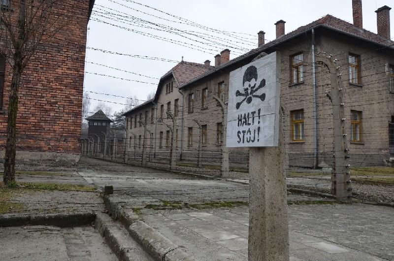 poze Lagar Auschwitz