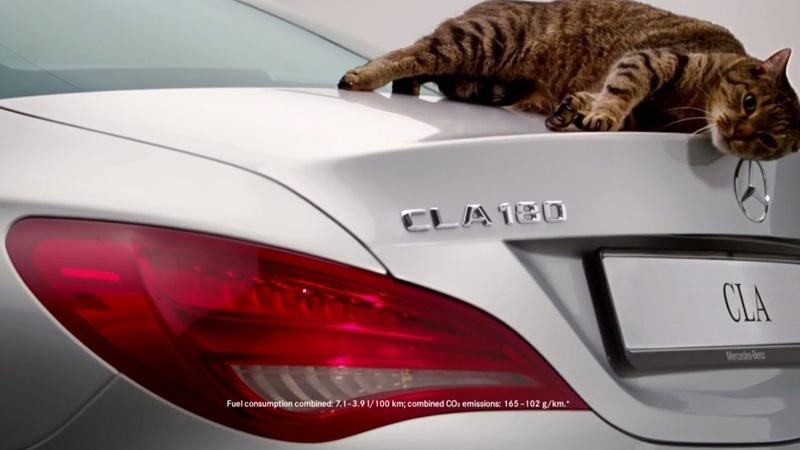 reclama Mercedes cu pisici