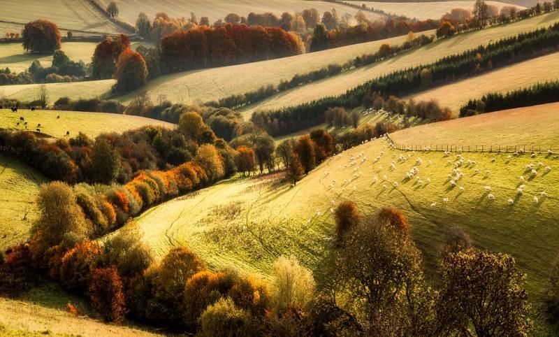 poze imagini peisaje de toamna